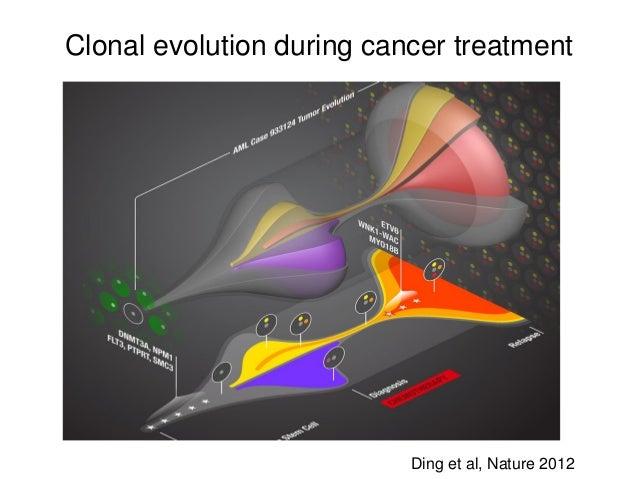 Clonal evolution during cancer treatment Ding et al, Nature 2012