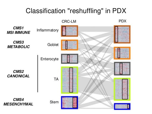 """Hunting for """"lost"""" genes by RNAseq analysis of PDX samples RNAseq Reads mapped only on Hs Genome Reads mapped only on Mm G..."""