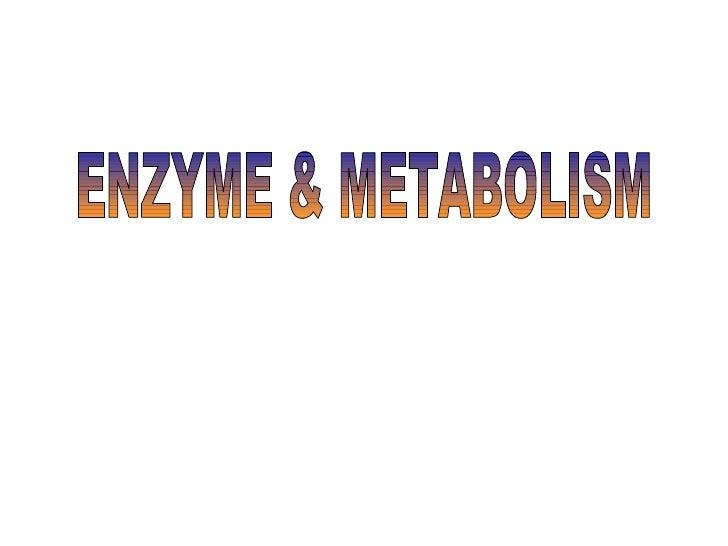 ENZYME & METABOLISM