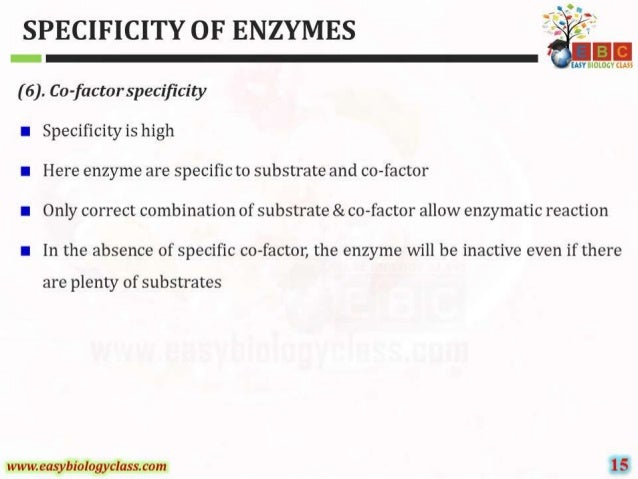 SPECIFICITY OF ENZYMES ' .  5      EASY BIOLOGV (LAOS  (6).  Co-factorspecificity  I Specificity is high  I Here enzyme are...
