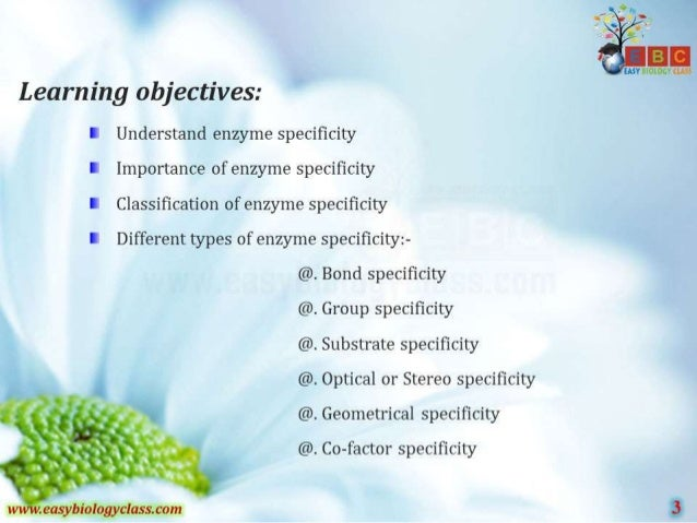 7  . ).m Learning objectives:  I Understand enzyme specificity I Importance of enzyme specificity I Classification of enzyme ...