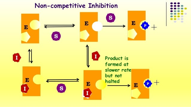 Non-competitive Inhibition  S  S  E  E  PP E  E  E  P  I  I  I  S  I Product is  formed at  slower rate  but not  E halted...