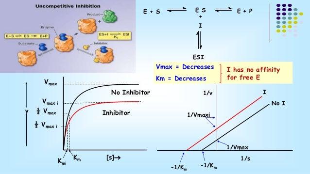 E + S  E S E + P  +  I  ESI  Inhibitor  Vmax  Vmax i  ½ Vmax  Km [s]  ½ Vmax i  Vmax = Decreases  Km = Decreases  Kmi  v ...