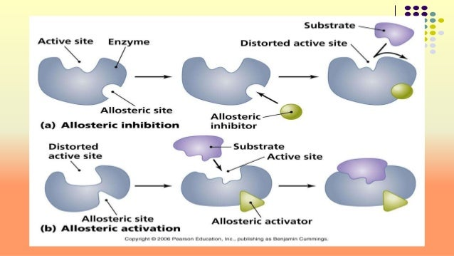 allsoteric inhibitor km 24