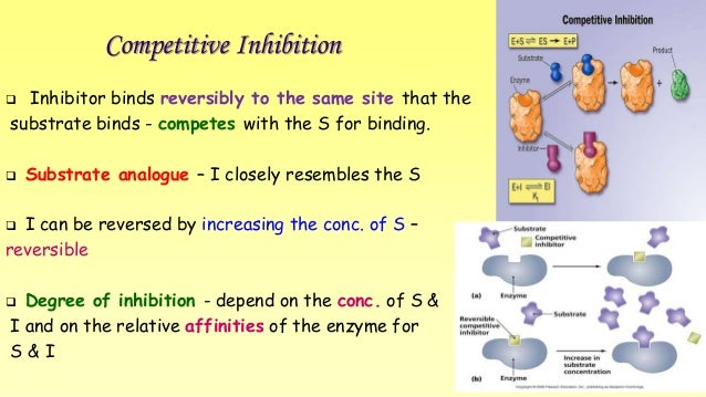 Competitive Inhibition   Inhibitor binds reversibly to the same site that the  substrate binds - competes with the S for ...