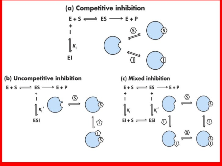 enzyme inhibition Enzyme inhibition is a common physiological process some aspects are fairly obvious: in tissues that synthesize proteases, inhibitors.