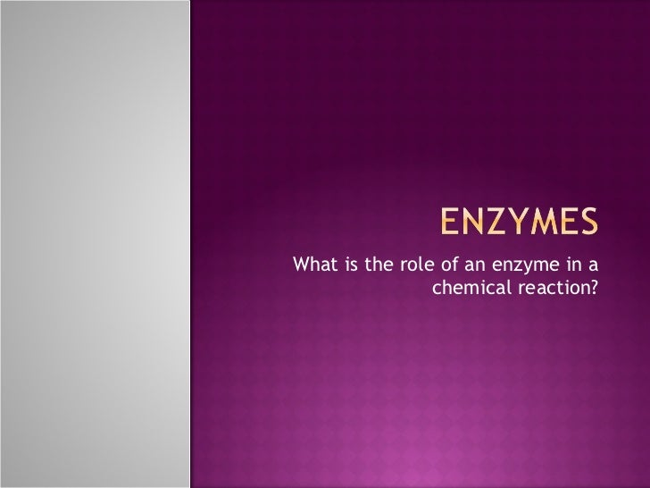 What is the role of an enzyme in a chemical reaction?