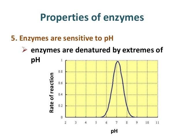 enzyme and ph lab report Effects of ph on enzymes experiment purpose the purpose of this experiment is to find out the effects of ph upon the effects of ph on an enzyme osmosis lab report.