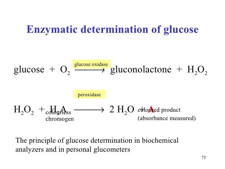 Enzymes 2
