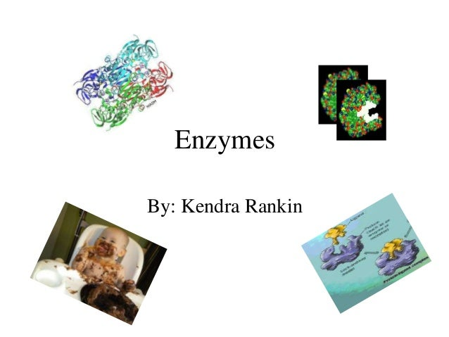 EnzymesBy: Kendra Rankin