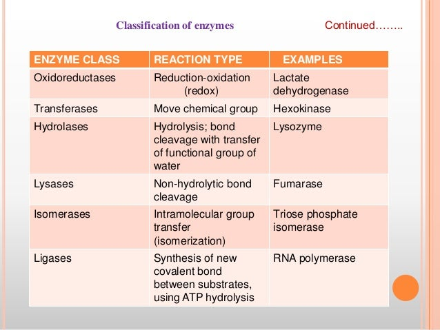 Substrate concentration: definition & effect on enzyme activity.