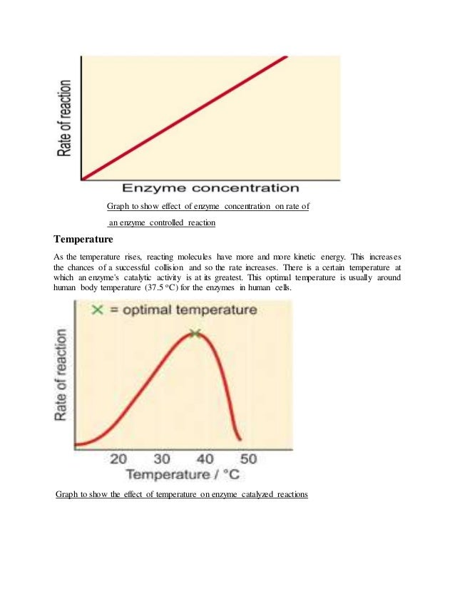 the effect of substrate concentration on an enzyme catalyzed reaction Enzymology enzyme kinetics of enzyme catalyzed reaction effect of substrate concentration of enzyme catalyzed reaction as determined by formation of.