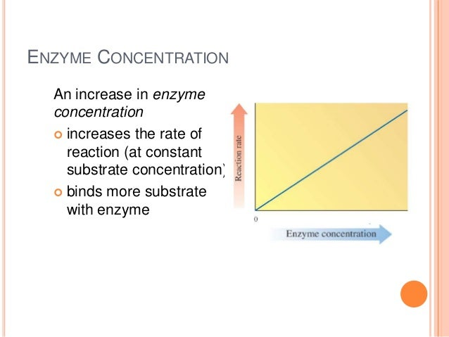 What Effects of Concentrations of a Substrate on Enzyme Lab Answers