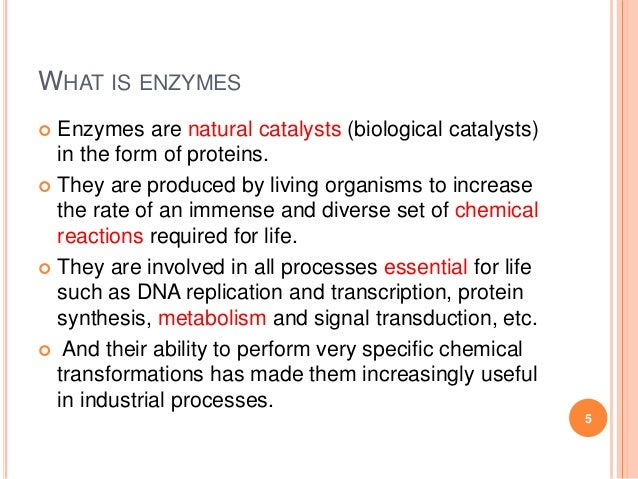 Enzymes: Properties and Mechanism of Enzyme Action