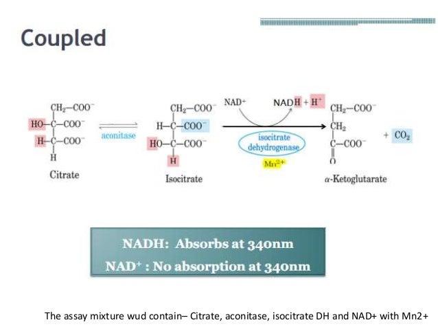 Development of an enzyme assay EZA - PowerPoint PPT Presentation