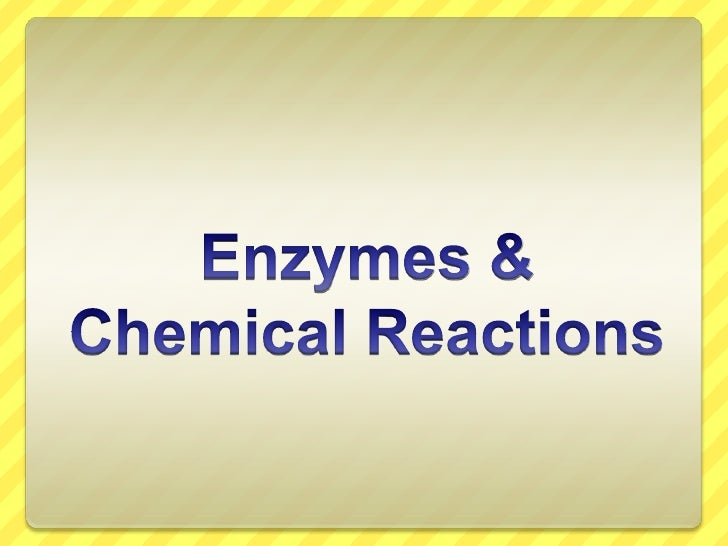 Enzymes & Chemical Reactions<br />