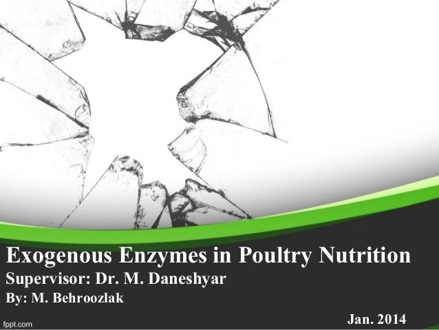 Exogenous Enzymes in Poultry Nutrition Supervisor: Dr. M. Daneshyar By: M. Behroozlak Jan. 2014