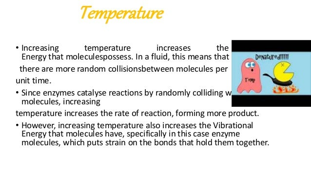 the factors affecting enzyme activity There are three more factors that i know of that may affect enzyme activity,  assuming optimum temperature and ph: 1) concentration of enzyme:.