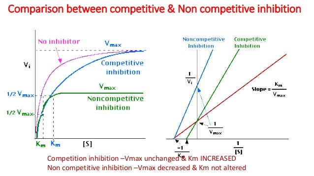 Noncompetitive Vs Uncompetitive Inhibition