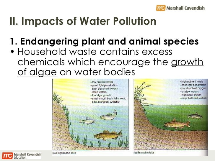 Chapter 9: Pollution in the World