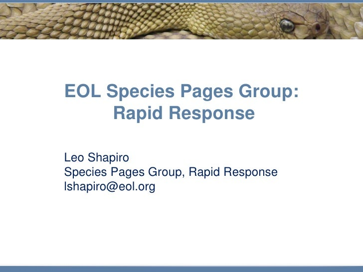 EOL Species Pages Group:      Rapid Response  Leo Shapiro Species Pages Group, Rapid Response lshapiro@eol.org