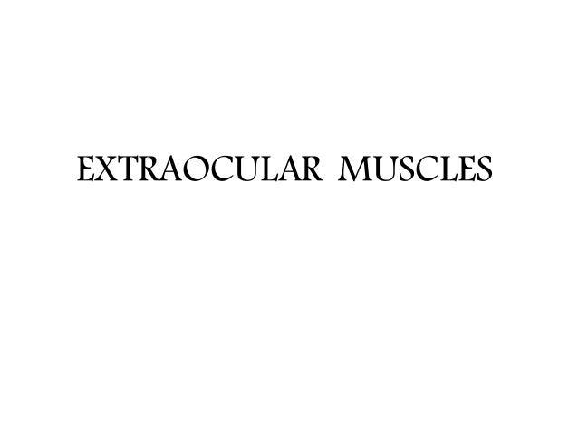 Extra ocular muscles ppt Slide 2