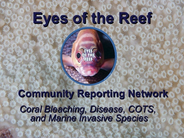 Eyes of the ReefEyes of the Reef Community Reporting NetworkCommunity Reporting Network Coral Bleaching, Disease, COTS,Cor...