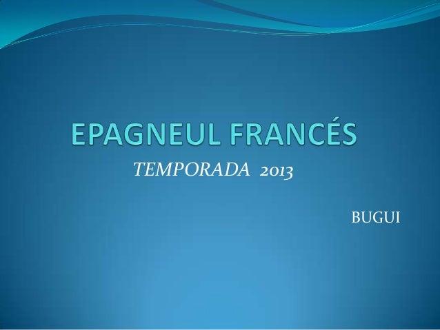 TEMPORADA 2013                 BUGUI