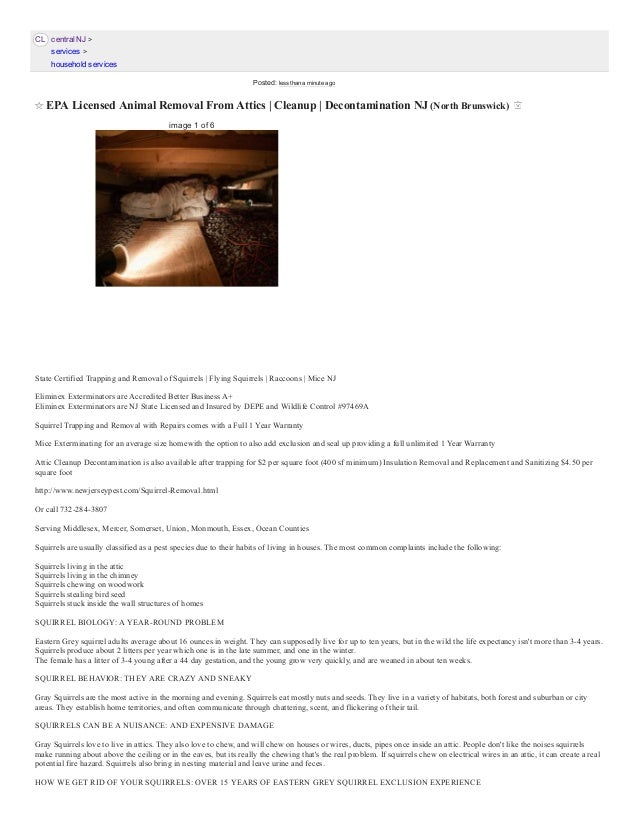 Epa Licensed Animal Removal From Attics East Brunswick Nj