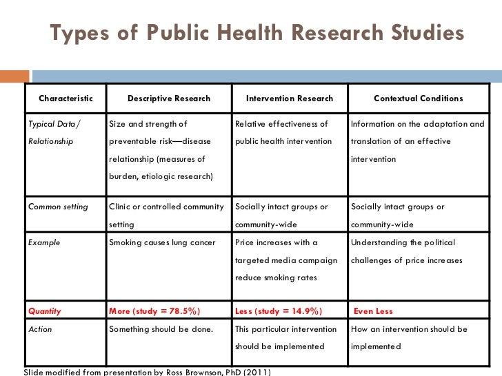 literature review example public health