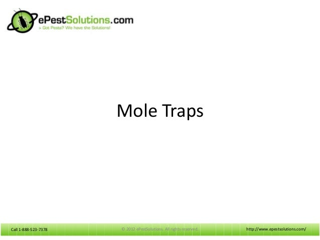 Call 1-888-523-7378Call 1-888-523-7378 Mole Traps http://www.epestsolutions.com/© 2012 ePestSolutions. All rights reserved.