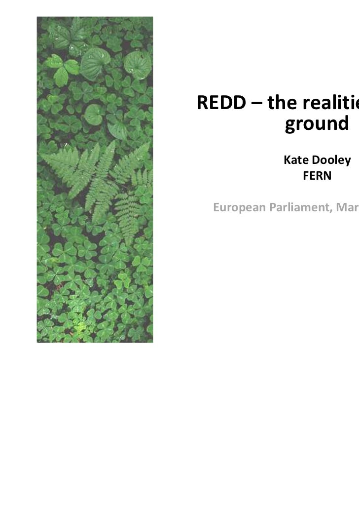 REDD – the realities on the         ground             Kate Dooley                FERN European Parliament, March 1st, 2011