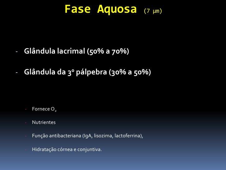 Fase Aquosa                             (7 µm)- Glândula lacrimal (50% a 70%)- Glândula da 30 pálpebra (30% a 50%)  -   Fo...