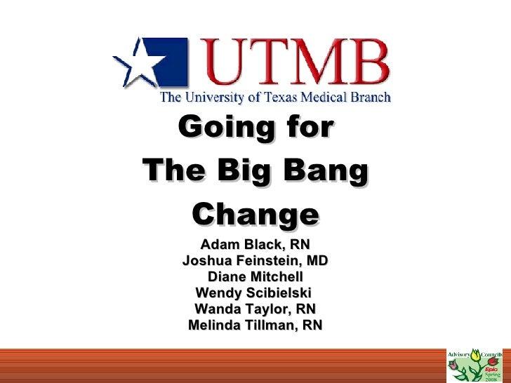 Going for The Big Bang Change Adam Black, RN Joshua Feinstein, MD Diane Mitchell Wendy Scibielski  Wanda Taylor, RN Melind...