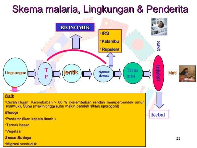 Skema malaria, Lingkungan & Penderita                                 BIONOMIK                                            ...