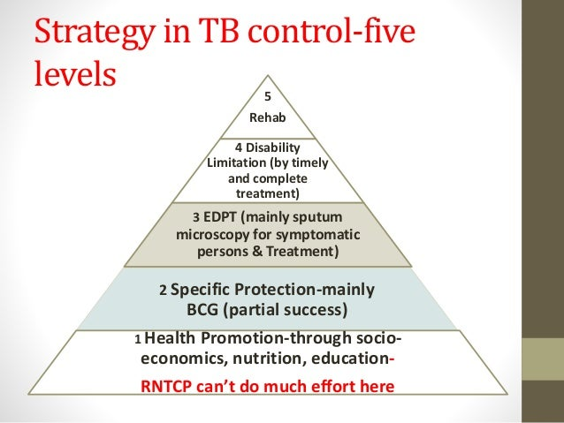 epidemiology triangle of tuberculosis This is small lecture on the epidemiologic triangle that i made for my epidemiology class check out my other ones at cyranlessonscom.