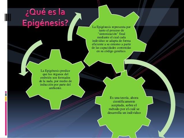 Epigénesis.. Exposición