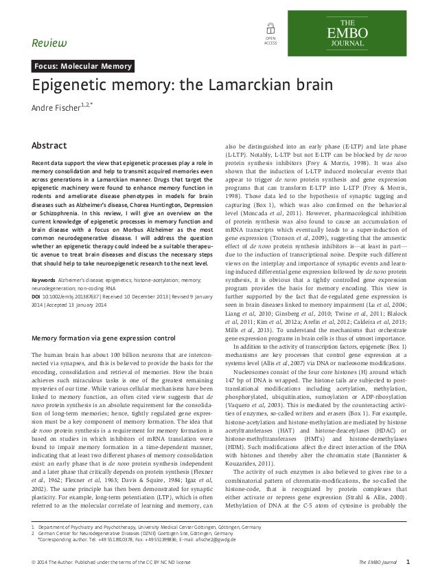 Review  Focus: Molecular Memory  Epigenetic memory: the Lamarckian brain  Andre Fischer1,2,*  Abstract  Recent data suppor...