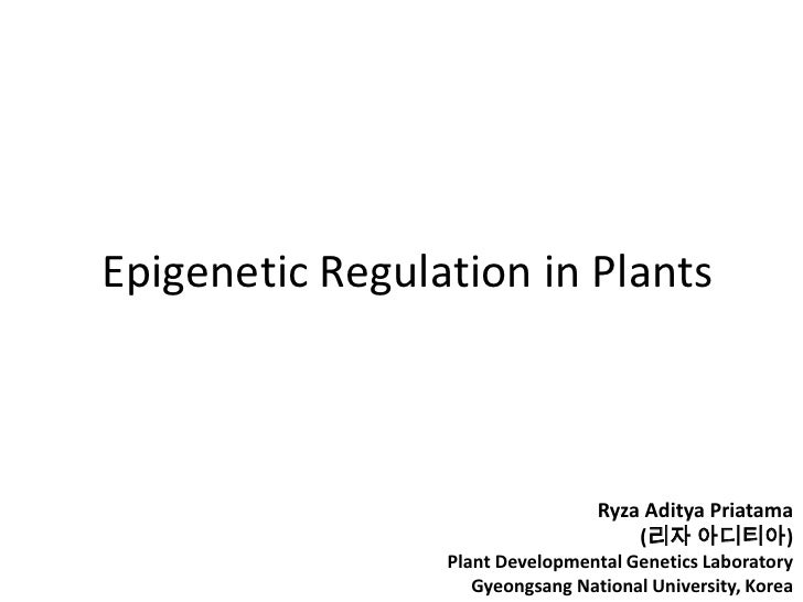Epigenetic Regulation in Plants<br />Ryza Aditya Priatama<br />(리자 아디티아)<br />Plant Developmental Genetics Laboratory<br /...