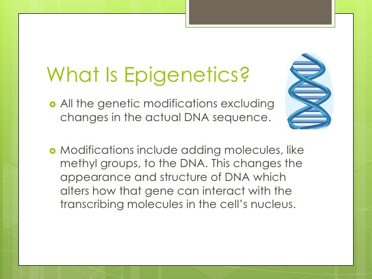an introduction to epigenetics Two: transubstantiation reconfigured – an introduction to nutritional epigenetics nutritional epigenetics is only one corner of a much larger phenomenon in biology that is going under the label of epigenetics .