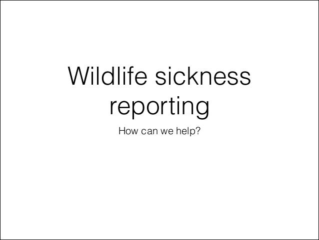 Wildlife sickness reporting How can we help?