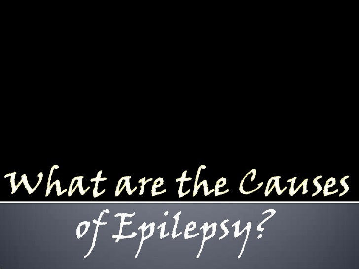 What are the Causesof Epilepsy?<br />