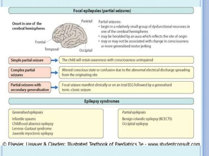 PARTIAL SEIZURE - FOCAL SEIZURE Begin in a relatively small group of dysfunctional  neurones in one of the cerebral hemi...