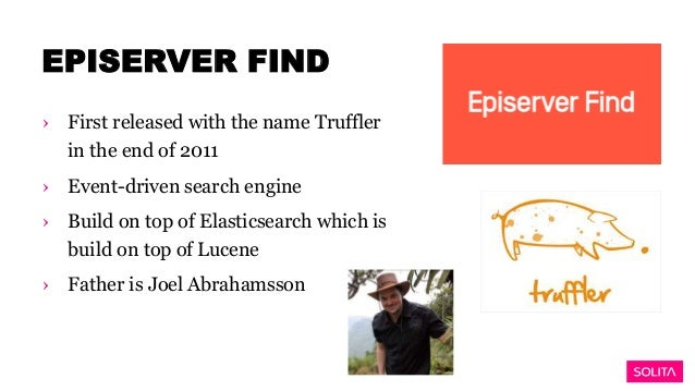 Unwanted Lucene Search Results in EpiServer Commerce R2