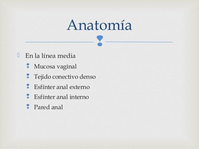 Presentacion sobre Episiotomia, programa de Maestria en Ginecologia …