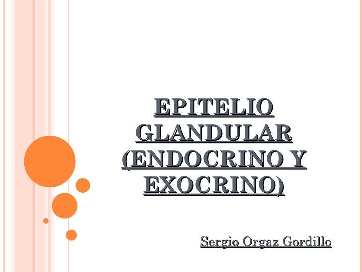 EPITELIO GLANDULAR (ENDOCRINO Y EXOCRINO) Sergio Orgaz Gordillo