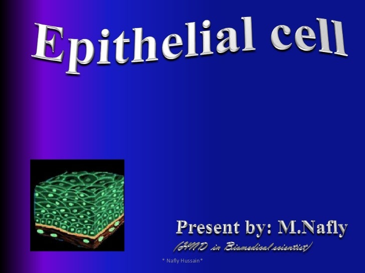 Epithelial cell<br />Present by: M.Nafly<br />(HND  in Biomedical scientist)<br />* Nafly Hussain*<br />