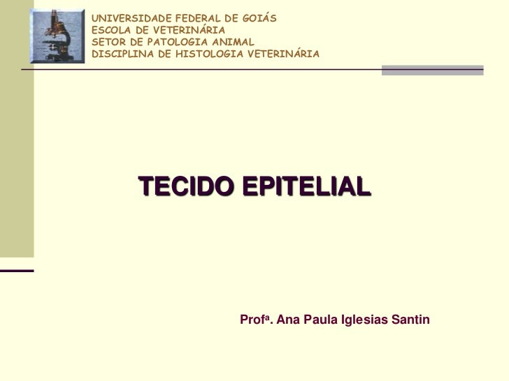 UNIVERSIDADE FEDERAL DE GOIÁSESCOLA DE VETERINÁRIASETOR DE PATOLOGIA ANIMALDISCIPLINA DE HISTOLOGIA VETERINÁRIA       TECI...