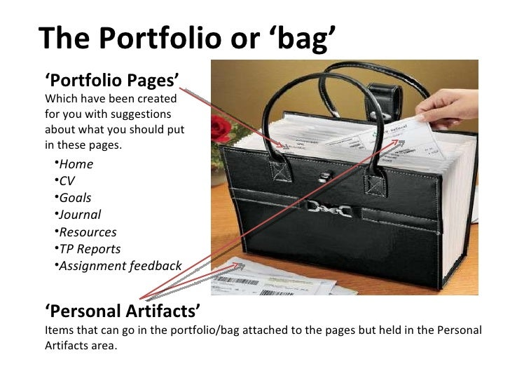 The Portfolio or 'bag' ' Portfolio Pages' Which have been created for you with suggestions about what you should put in th...