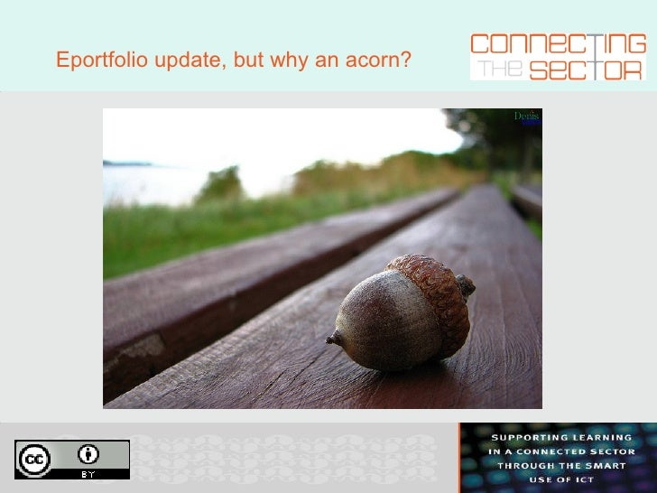 Eportfolio update, but why an acorn?